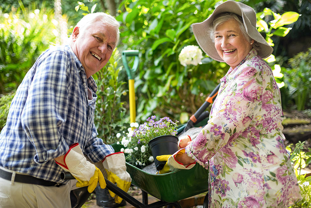 Senior man and woman smiling and gardening outside